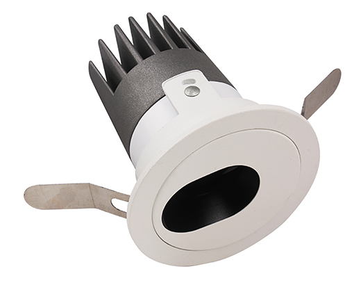 LED Down Light D35