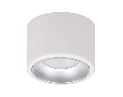 LED DownLight D25