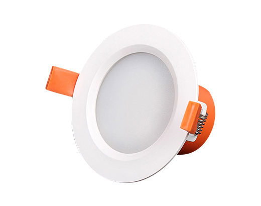LED DownLight D19
